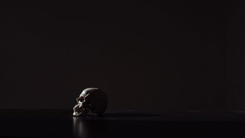 William Holsinger - Death is Our Teacher - a skull