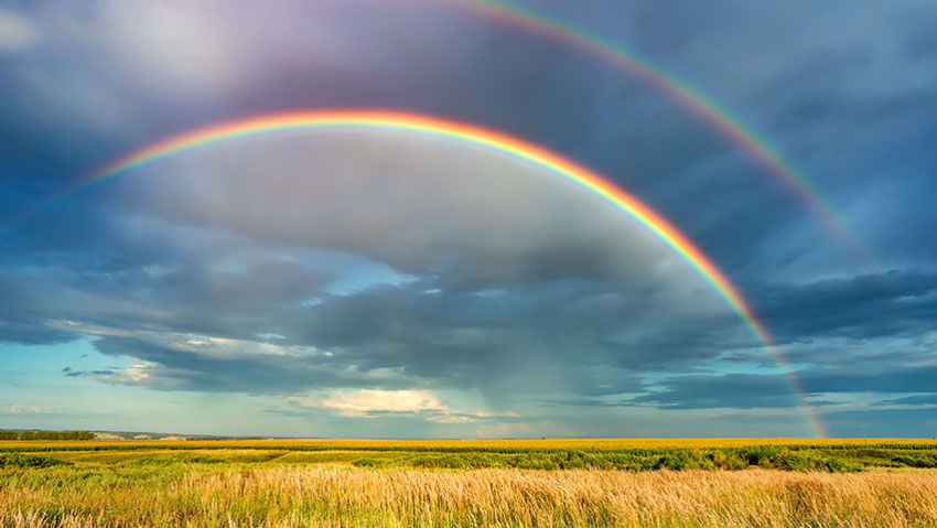 William Holsinger - Hospice and Creativity - Rainbow with a field