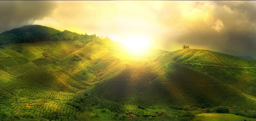 William Holsinger - Where Do You Turn - Sunset